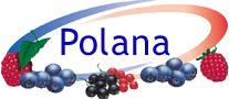 polana_logo